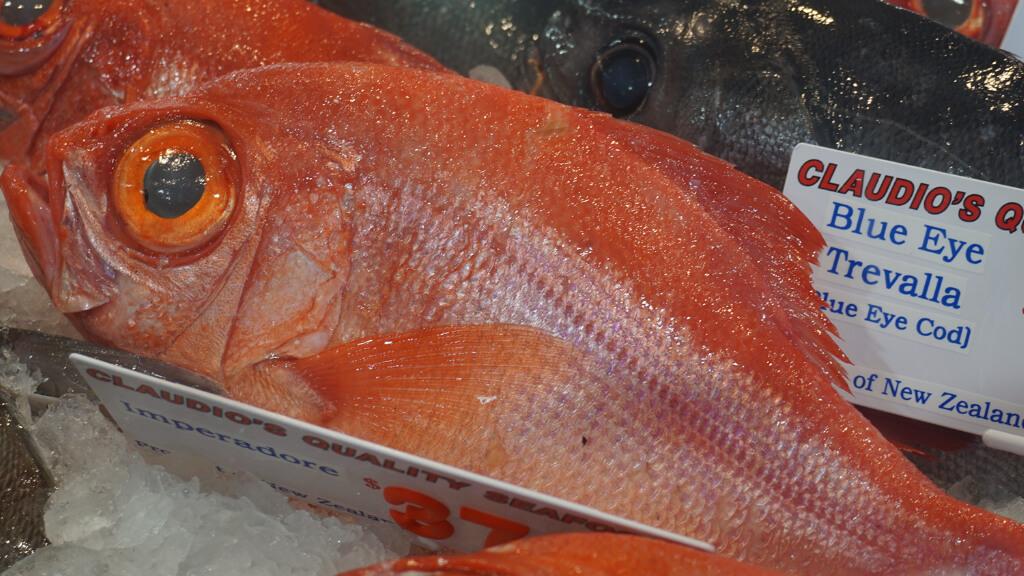 Imeradore Fish